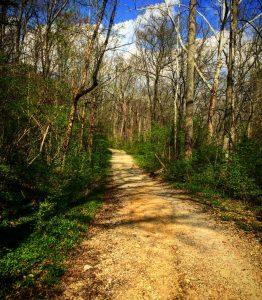 HIking Trails In Cincinnati