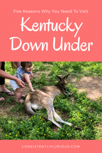 5 reasons to visit Kentucky Down Under