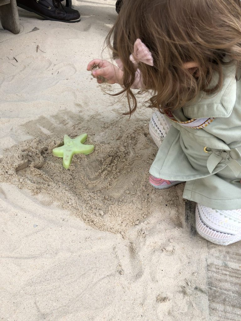 Things To Do With Toddlers In Gulf Shores Alabama