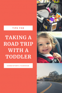 Tips For Taking A Road Trip With A Toddler