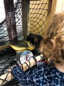 Destin Florida with Kids: Destin Fishing Museum