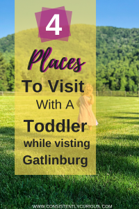 Toddler Activities In Gatlinburg