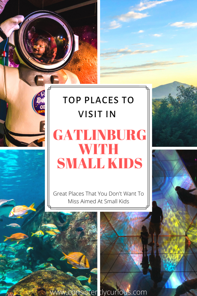 Things To Do in Gatlinburg with Small Kids