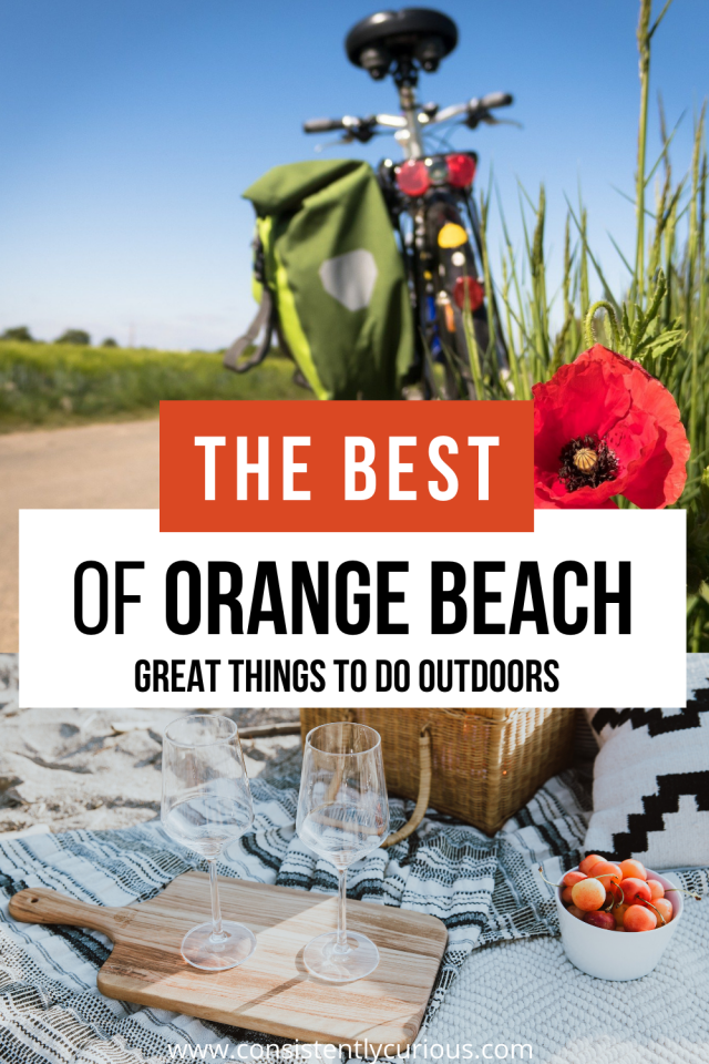 Cool Things To Do in Orange Beach