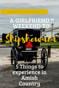 Girlfriend's Weekend Shipshewana
