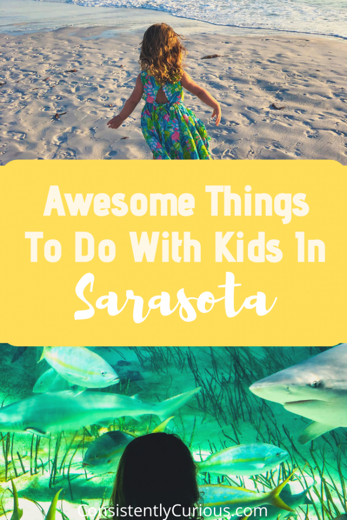 Things To Do With Kids In Sarasota FL