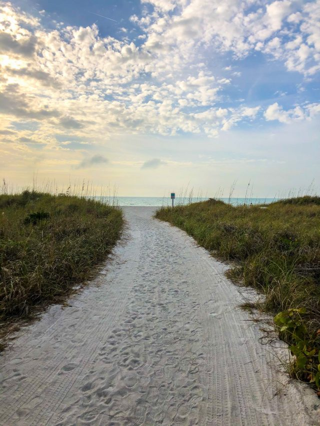 The Beaches Of Fort De Soto
