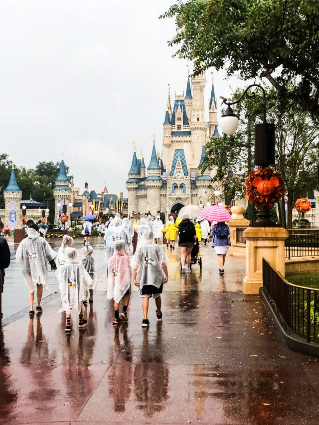 Disney World In The Rain
