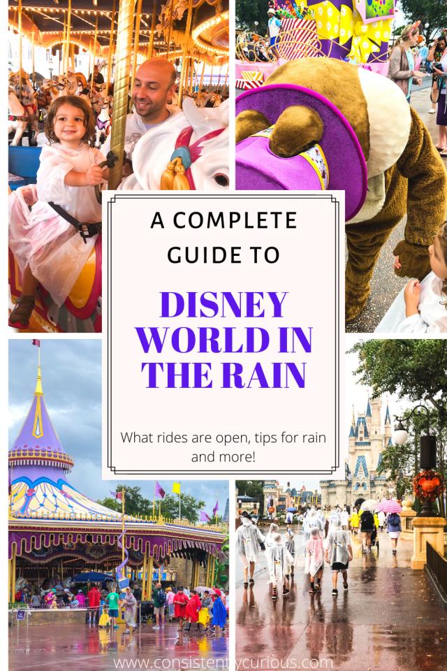 Disney World In The Rain Guide