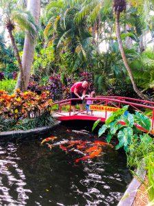 Things To Do In St. Petersburg: Sunken Gardens