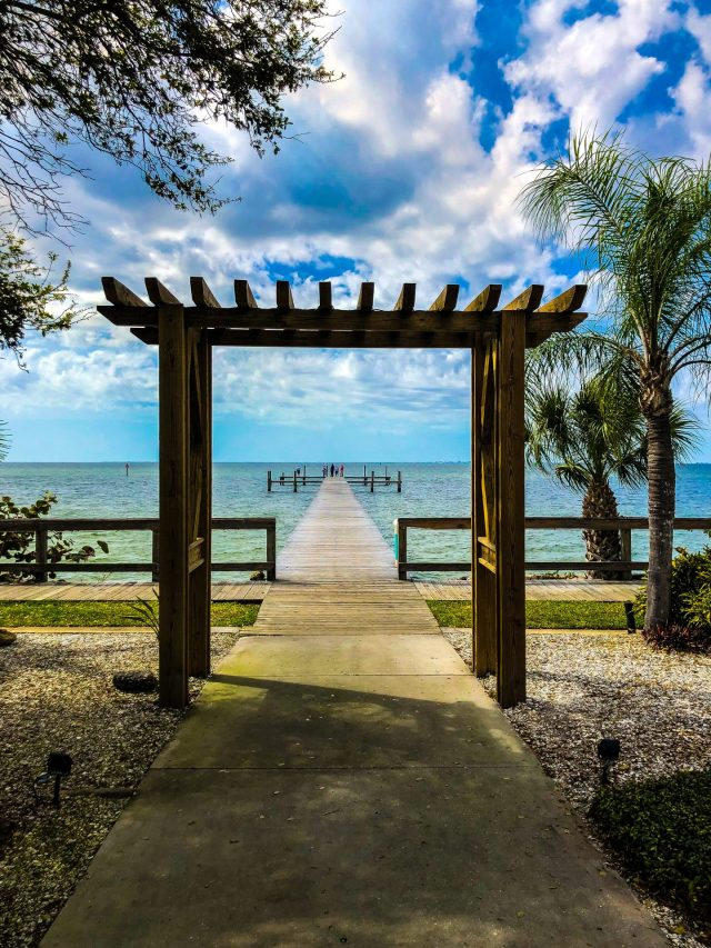 day trips from st petes beach