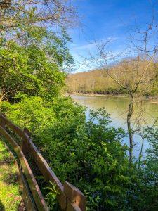 Kelley Nature Preserve: Hiking Trails in Cincinnati