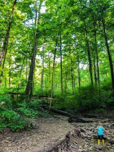 Caldwell Nature Preserve: Best Hiking Trails In Cincinnati