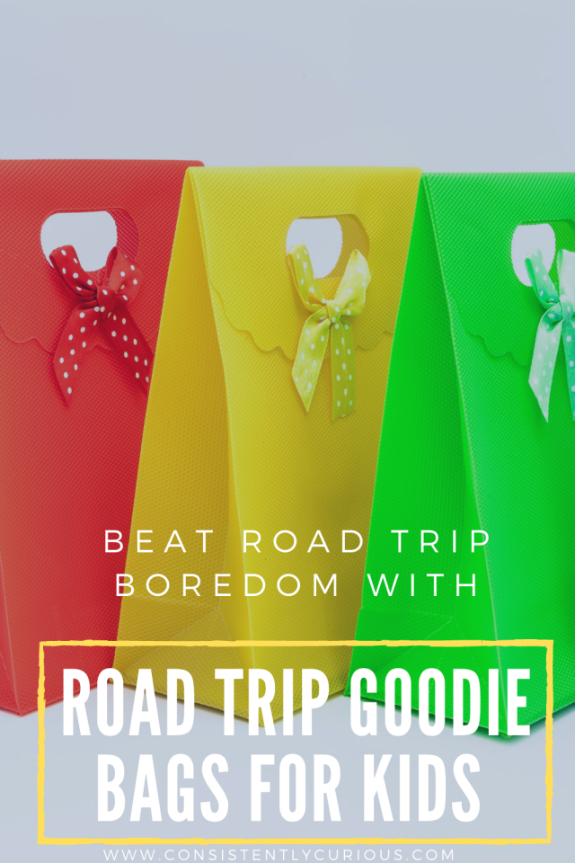 Road Trip Goodie Bags For Toddlers and Kids