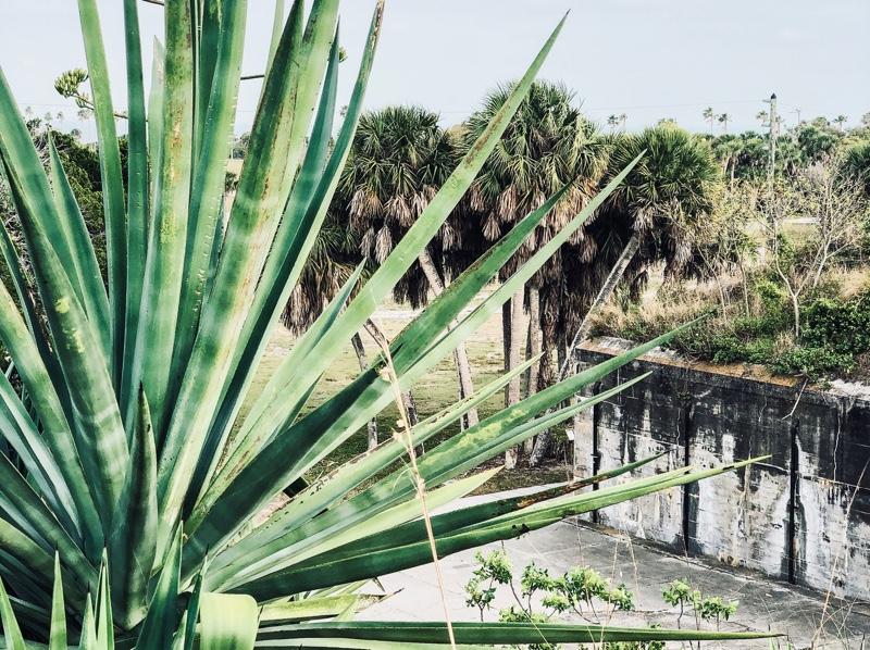 Fort De Soto Florida