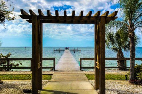 Things To Do In St. Petersburg FL