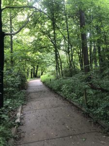 Caldwell Nature Preserve In Cincinnati: Paved Trail