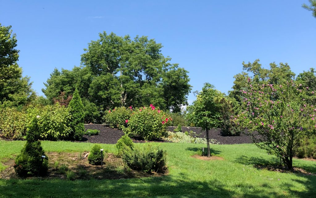 Stanley M Rowe Arboretum