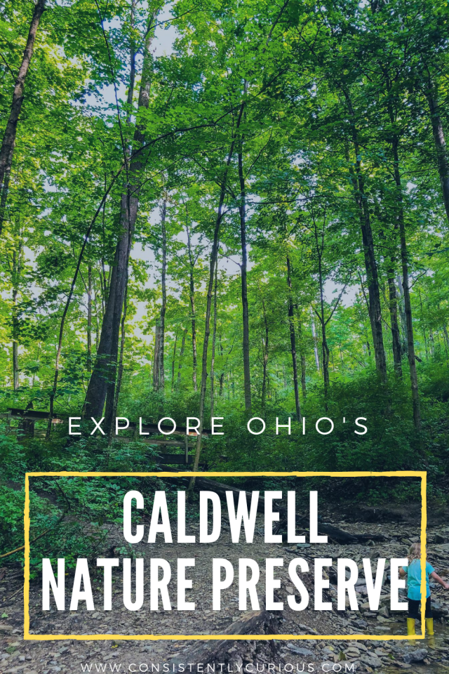Caldwell Nature Preserve In Cincinnati