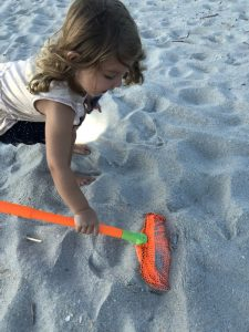 Ghost Crab hunting tips