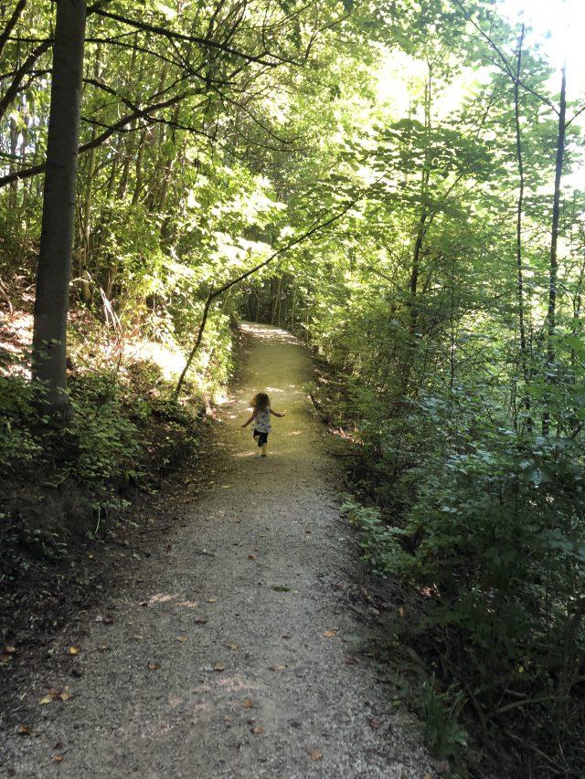 Johnson Nature Preserve