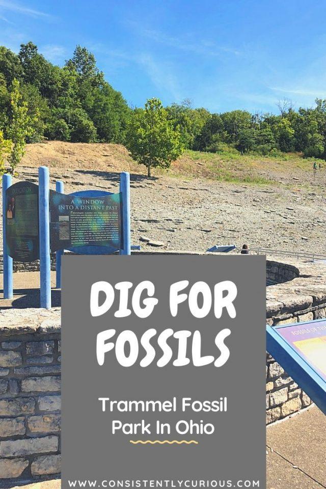 Ohio Fossil Park