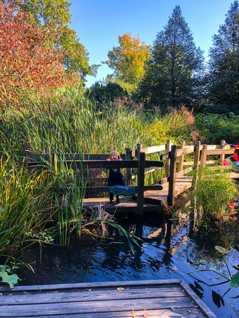 Cleveland Botanical Gardens: Fun Outdoor Things To Do In Cleveland With Kids
