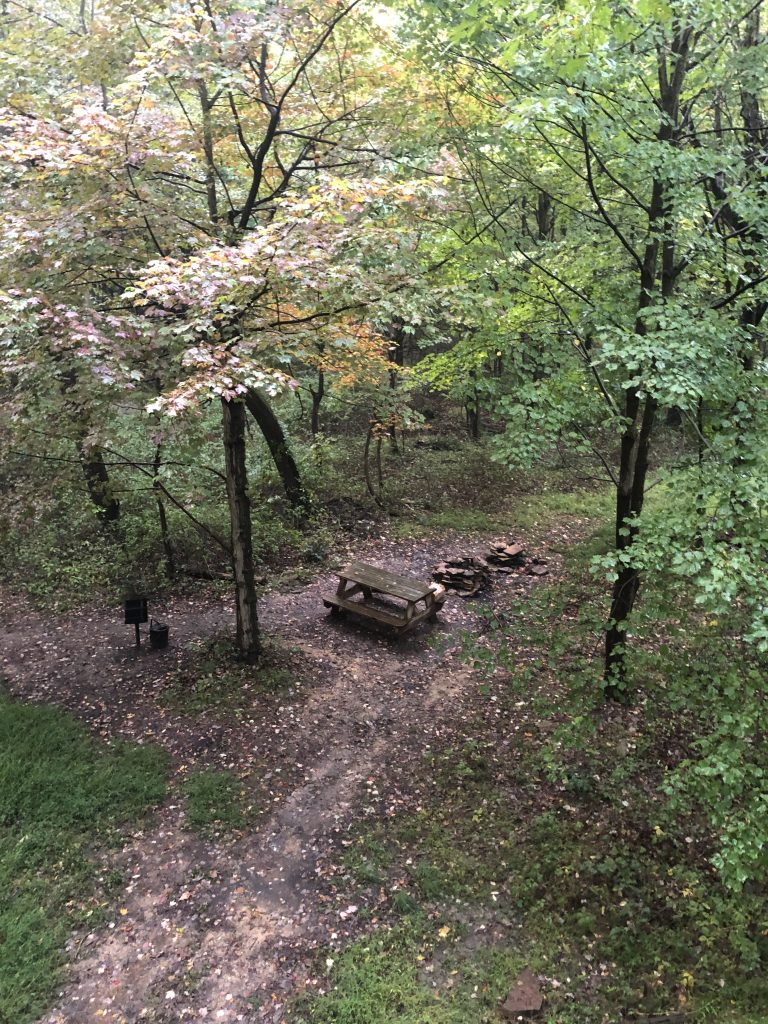 Picnic area and firepit with the treehouses at the Mohicans