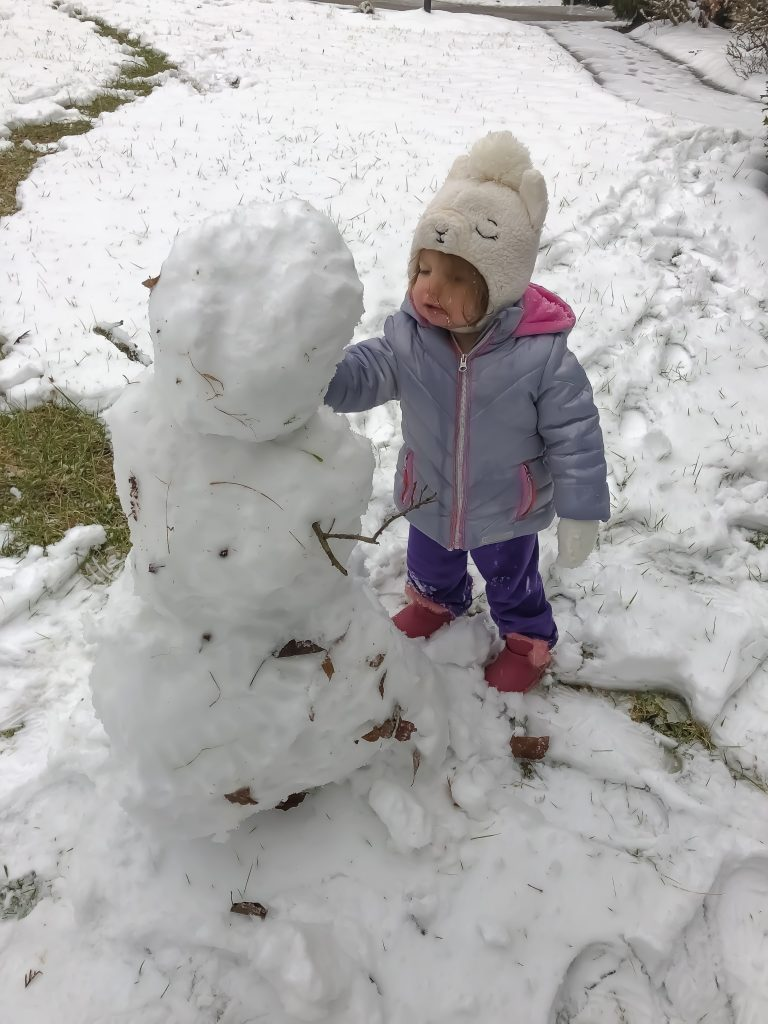 Build A Snowman : Things To Do In The Winter