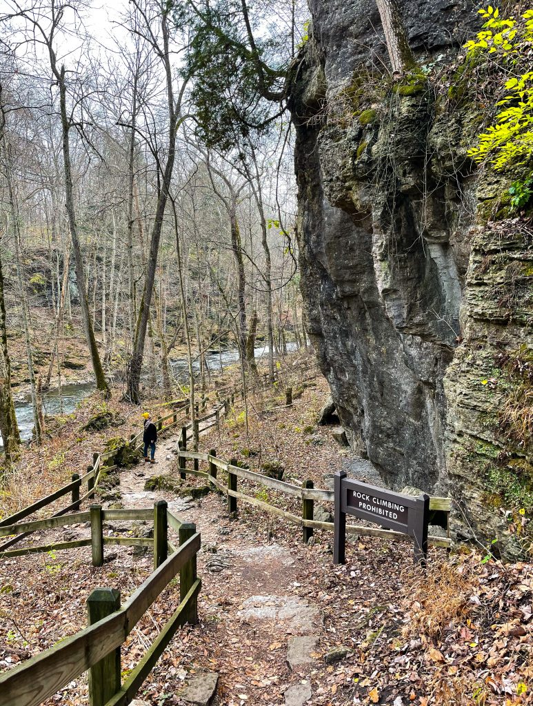 Clifton Gorge Nature Preserve :  Springfield Ohio