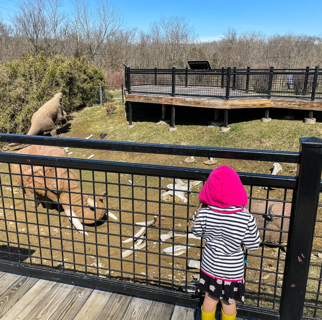 Discovery Trail At Big Bone Lick State Park