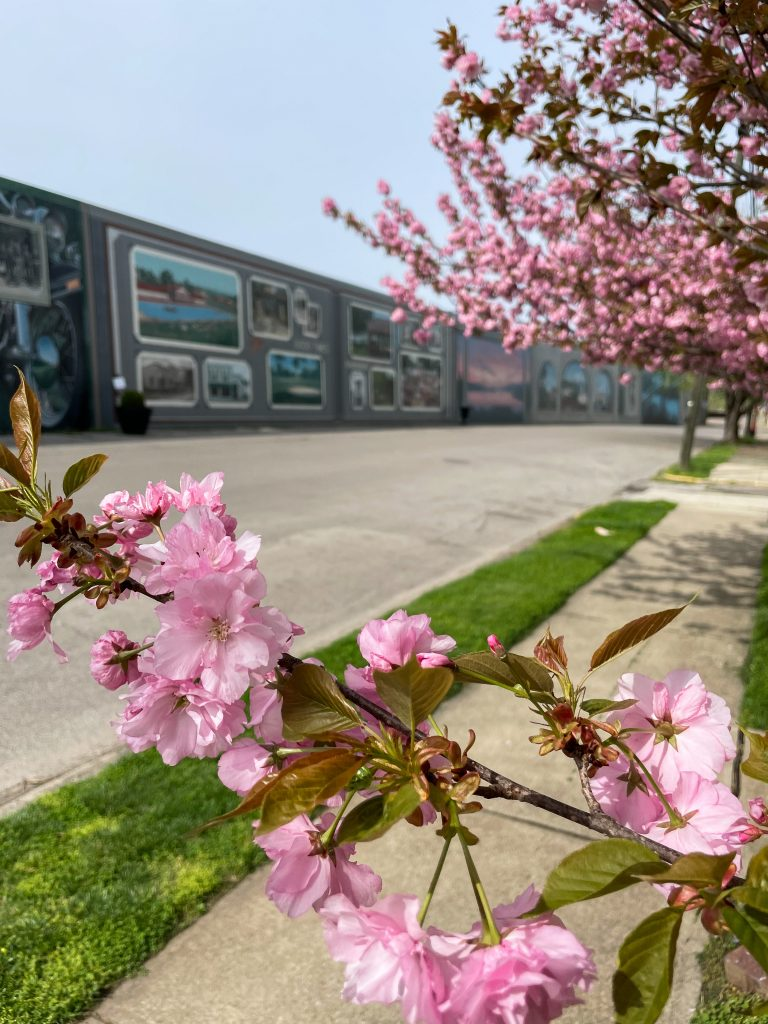 Floodwall Murals in Portsmouth, Ohio