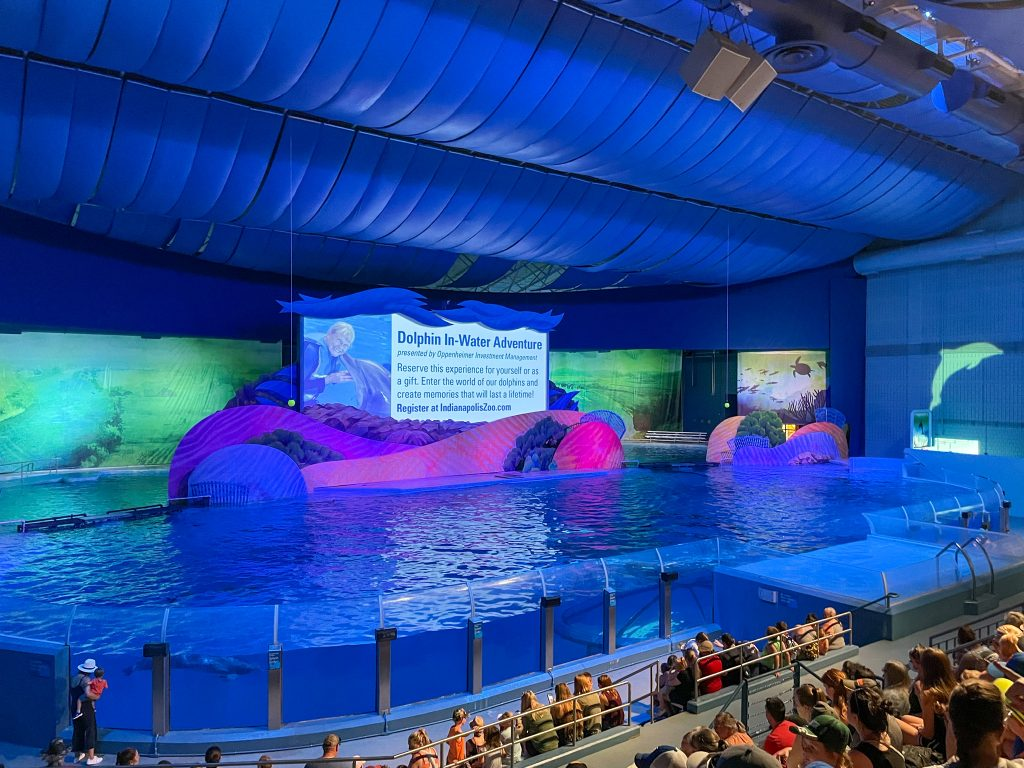 Dolphin show at the Indy Zoo: Indianapolis weekend getaway itinerary