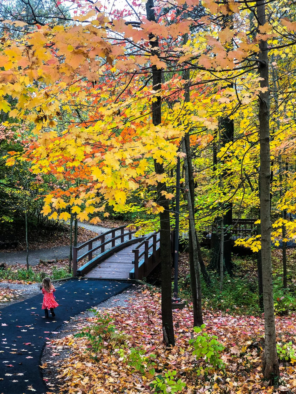 Beautiful Places In Ohio To Discover